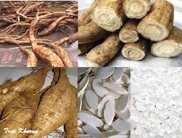 Nhật Bản tăng nhập khẩu sắn từ thị trường Việt Nam