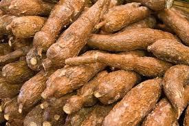 Xuất khẩu sắn, các sản phẩm từ sắn giảm cả lượng và trị giá