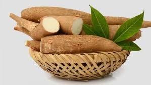 Xuất khẩu sắn và sản phẩm sụt giảm cả lượng và kim ngạch