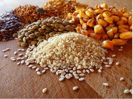 TT thức ăn chăn nuôi và nguyên liệu: Giá biến động tùy theo từng chủng loại
