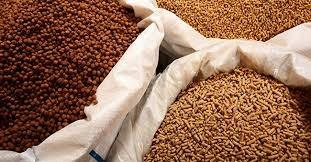 Trung Quốc – thị trường chủ lực xuất khẩu thức ăn gia súc và nguyên liệu