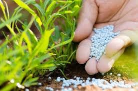 Năm 2017 nhập siêu trên 3 triệu tấn phân bón các loại