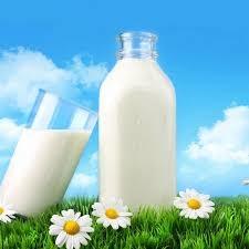 Sữa và sản phẩm xuất xứ từ New Zealand chiếm 35,8% tỷ trọng