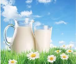 Hai tháng đầu 2017 nhập khẩu sữa và sản phẩm giảm kim ngạch