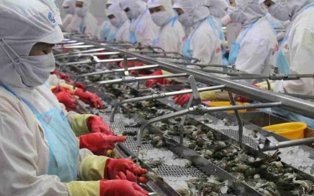 Cơ hội và thách thức của tôm Việt trong bối cảnh dịch bệnh Covid-19