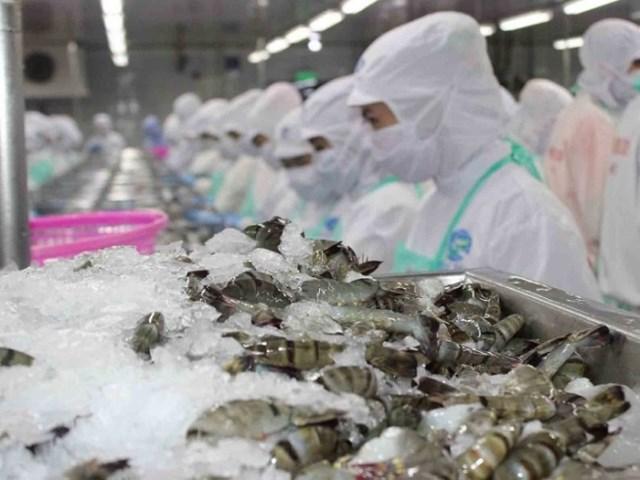Lạc quan xuất khẩu thủy sản cuối năm