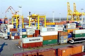 Nhập khẩu hàng hóa từ thị trường Ailen 11 tháng đầu năm 2020 tăng hơn 70%