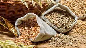 Nhập khẩu lúa mì, bột mì và sản phẩm lúa mì thế giới từ năm 2016-2021