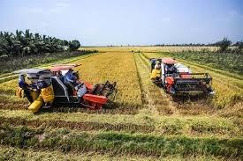 Thu hoạch đậu tương Brazil chậm hơn tốc độ năm 2020