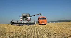 Mỹ hoàn thành 67% diện tích trồng ngô và 42% diện tích trồng đậu tương