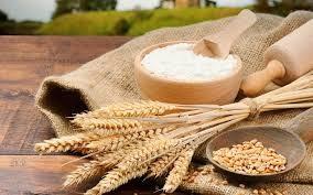 Sản lượng lúa mì Australia niên vụ 2021/22 dự báo tăng 11%