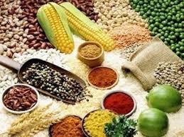 Ngô giảm giá, mặc dù ngũ cốc ghi nhận mức tăng hàng tuần gần 1%
