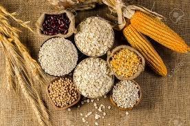 Giá lúa mì giảm do lo ngại về nguồn cung thế giới