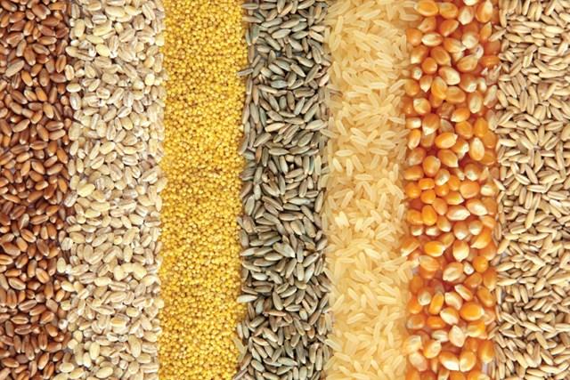 Đậu tương và lúa mì tăng, ngô giảm trong phiên giao dịch cuối tuần