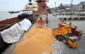 Nhập khẩu đậu tương tháng 8 của Trung Quốc giảm do nhu cầu ổn định