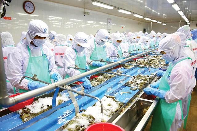 VASEP: Chỉ 30 - 40% doanh nghiệp thủy sản có đủ sức để phục hồi sau giãn cách xã hội