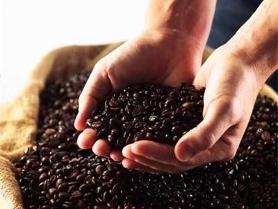 Bản tin thị trường cà phê ngày 18/2