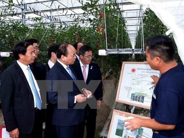Doanh nghiệp Việt Nam mở rộng đầu tư, kinh doanh sang Nhật Bản