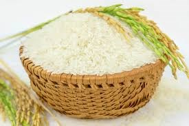 Thị trường lúa gạo ngày 14/9/2020: Giá thu mua lúa tại Nghệ An tăng mạnh