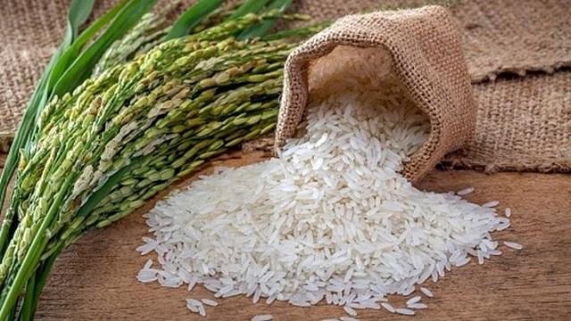 Thị trường lúa gạo ngày 6/11: Giá lúa gạo ổn định