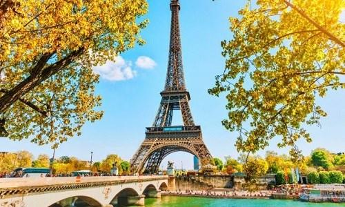 Mặt hàng dược phẩm chiếm 35,32% tổng trị giá nhập khẩu từ Pháp