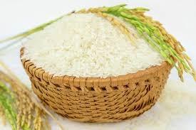 Giá lúa gạo ngày 11/11: Ổn định