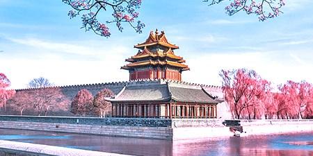 Xuất khẩu sang Trung Quốc tăng trưởng trong 10 tháng đầu năm 2020