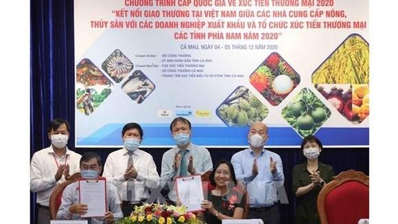 Đẩy mạnh tiêu thụ, phát triển TTXK cho các SP thế mạnh khu vực phía Nam năm 2020