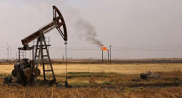 TT năng lượng TG ngày 11/12: Giá dầu Brent vượt mốc 50 USD/thùng