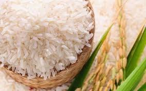 Thị trường lúa gạo ngày 2/2: Giá ổn định