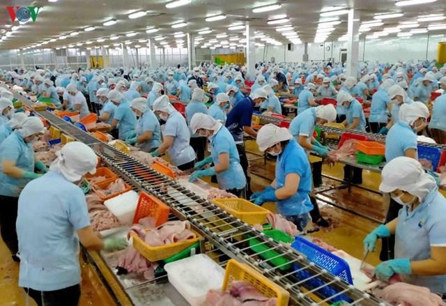 Hàn Quốc thông báo phương thức kiểm tra đối với cơ sở sản xuất thực phẩm xuất khẩu sang Hàn Quốc