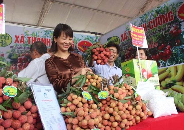 Tạo điều kiện thuận lợi, tăng cường hỗ trợ tiêu thụ các sản phẩm nông sản