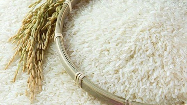 Giá lúa gạo hôm nay 9/6 ổn định
