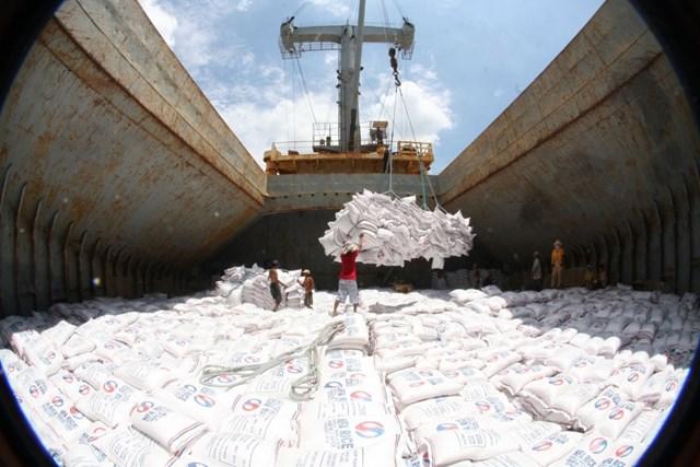 Phân bổ hạn ngạch thuế quan gạo Việt xuất khẩu theo EVFTA như thế nào?