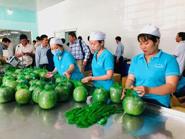 Tăng cường hoạt động xúc tiến đưa hàng Việt vào Thái Lan