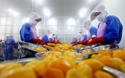 Giải pháp nhằm phát triển xuất khẩu bền vững trong những tháng cuối năm