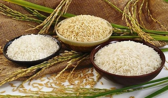 Giá lúa gạo hôm nay 8/7 đi ngang