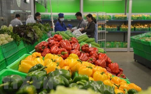 Cánh cửa tiếp cận thị trường Anh cho doanh nghiệp xuất khẩu nông sản Việt