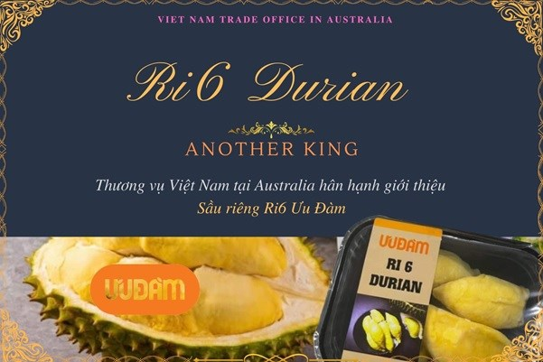 """Sầu riêng Ri6 Việt Nam """"cháy hàng"""" tại Úc"""