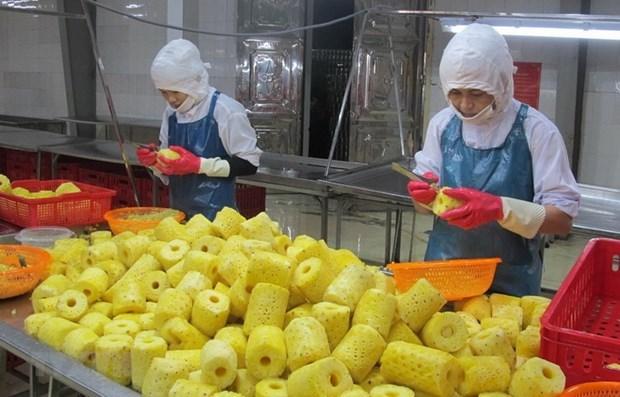 Tư vấn xuất khẩu nông sản, thủy sản sang thị trường Hà Lan