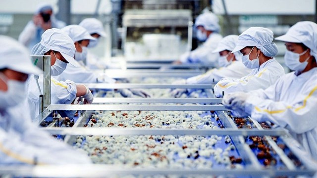 Việt Nam là đối tác thương mại lớn nhất của Italy trong ASEAN