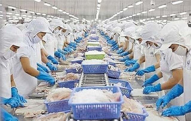 Xuất khẩu tôm của Việt Nam tới thị trường EU tận dụng hiệu quả Hiệp định EVFTA