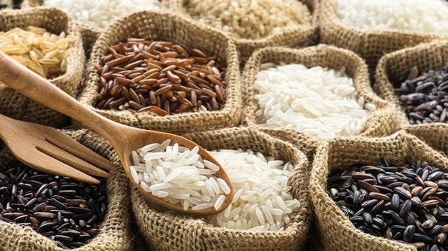Giá lúa gạo hôm nay 14/9 ổn định