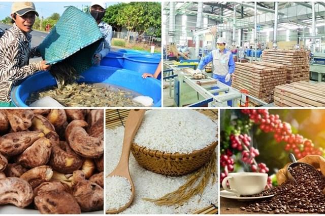 Thương mại Việt Nam – Hà Lan đạt kết quả khả quan nhờ EVFTA