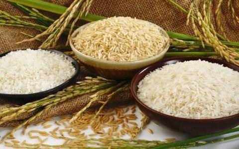 Giá lúa gạo hôm nay 7/10: Gạo nguyên liệu giảm nhẹ