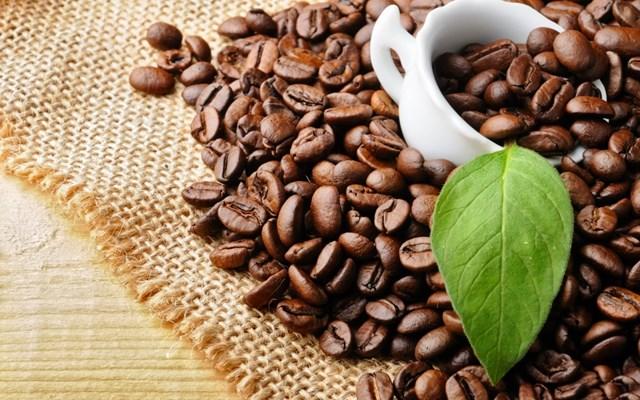 Giá cà phê trong nước ngày 25/10/2016