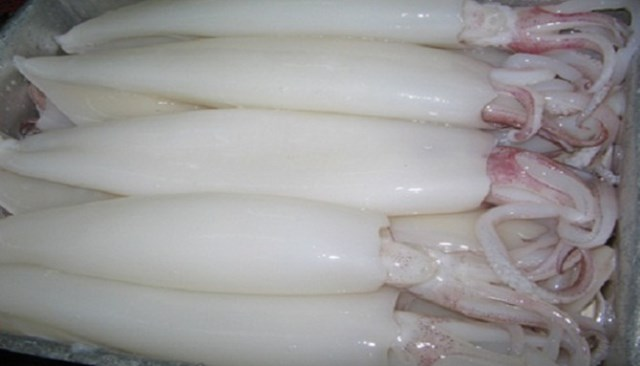 Quý 1/2016, xuất khẩu mực, bạch tuộc 3 thị trường chính giảm