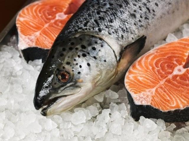 Giá cá hồi Chi Lê xuất sang Mỹ tiếp tục tăng, sang Brazil giảm
