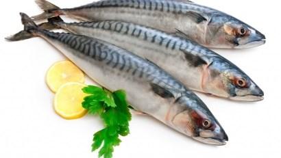 Hàn Quốc nhập khẩu cá thu Na Uy tăng 73% trong nửa đầu năm 2016