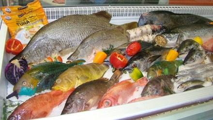 Giá thủy sản tại một số tỉnh ngày 17/8/2016
